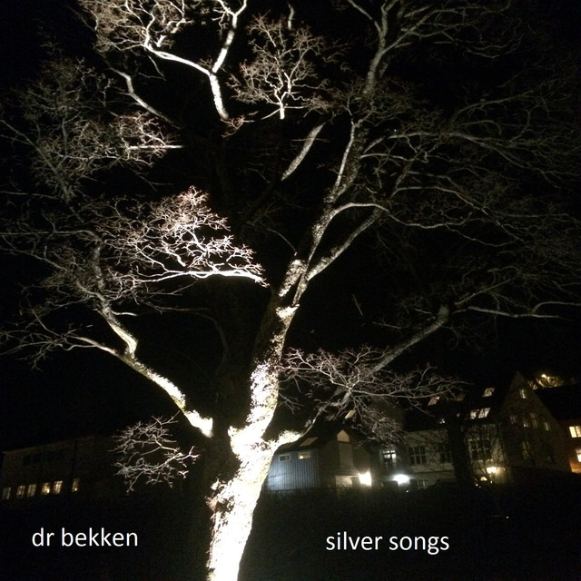 Dr Bekken - Silver Songs