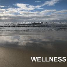 Broulee- Wellness