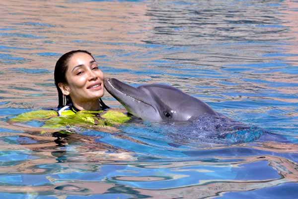 Sofia Hayat went for a event in Dubai where she had great time with dolphins