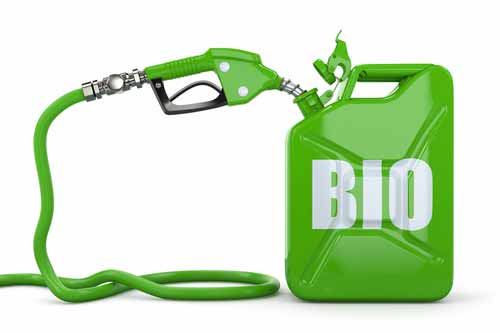 Bio Fuel Programme in India – The Way Forward