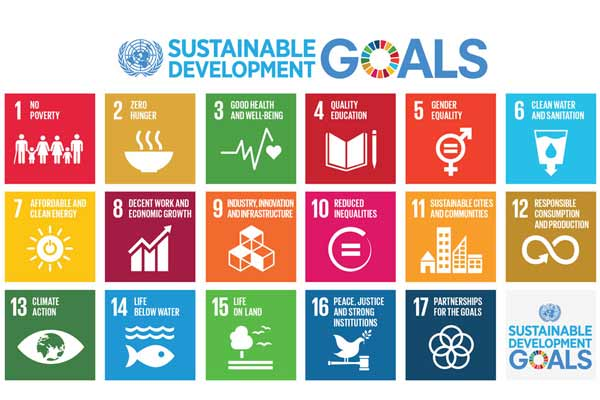 UN statistical body agrees to global indicators to measure sustainable development goals