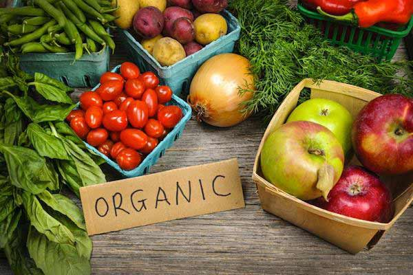 Strong Demand from the Emerging Middle Class Population and Steady Rise in the Number of Online Retailers Have Boosted Demand for Organic Food in China: Ken Research