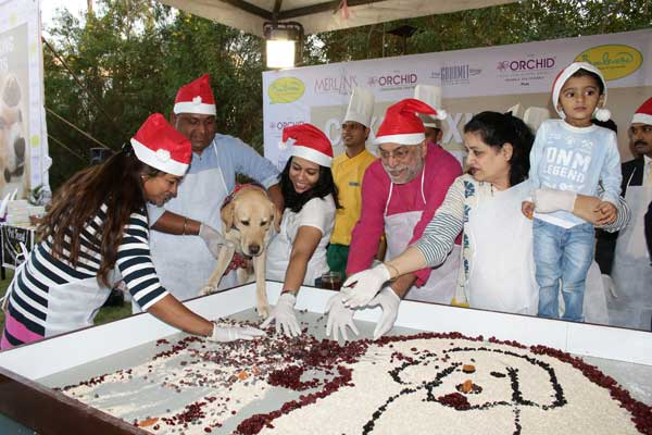 Furry friends indulge in Christmas Cake Mixing at The Orchid Hotel