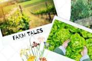 Farm Tales - unplug from the city life and enjoy your Sunday on a Farm
