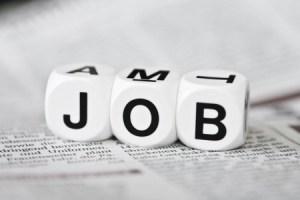 stellenangebot jobs