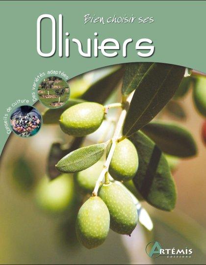 Bien choisir ses oliviers