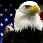 アメリカ国旗・国章と国鳥(ハクトウワシ)の由来・意味
