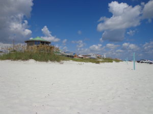 Request New Smyrna Beach Real Estate Information