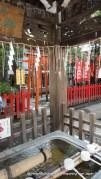 Water at the Local Shitaya Shrine