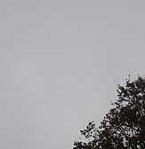 greyskies