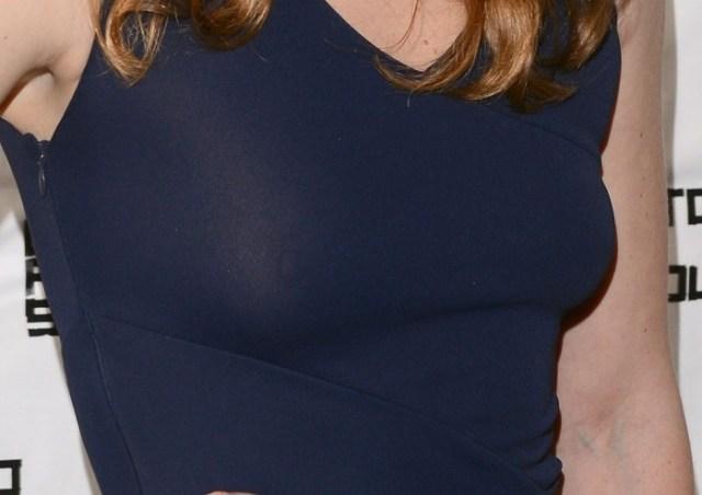 julia stile - nipple.jpg