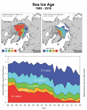 Figure 5. Sea ice age for October 22 to 28 for 1985 (top left) and 2019 (top right), and timeseries of ages for that week from 1985 to 2019 (bottom) from NSIDC's EASE-Grid Sea Ice Age, Version 4. ||Credit: National Snow and Ice Data Center | High-resolution image
