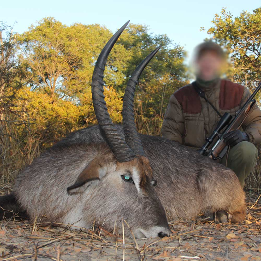 Nsonga Game Management & Lodges