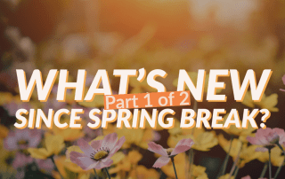 Wildflower field with headline: What's new Since Spring Break?Part 1 of 2