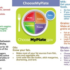 Healthy Plate Diagram Club Car Ds Gas Ignition Switch Wiring Everything You Eat And Drink Matters  Focus On Variety