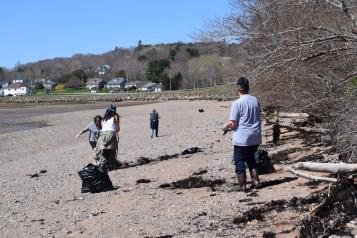 Digby Beach Sweep 6