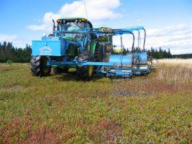 Harvesting 2004 006