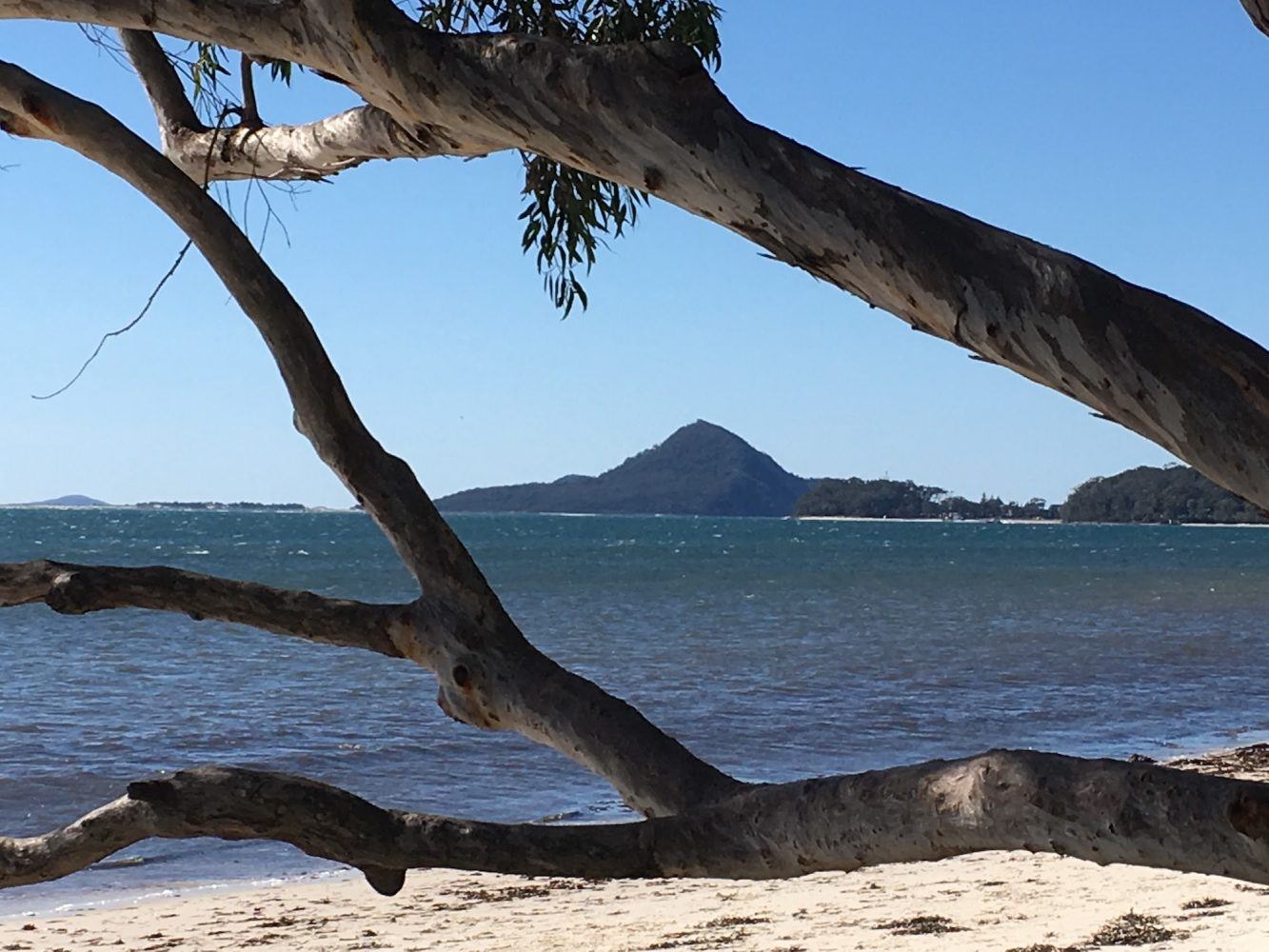 Port Stephens and Nelson bay