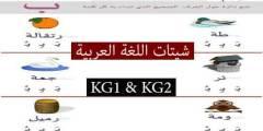 مذكرة شيتات لغة عربية كيجي1