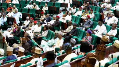 Photo of Reps Approve Issuance Of N148bn Promissory Notes To 5 States