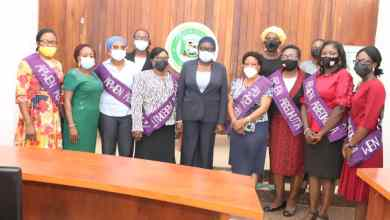 Photo of Make Engineering Attractive to Women – Ogun Deputy Governor Charged APWEN