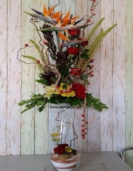Ψηλό Βάζο, Άνθη, Φυτά Νταλαπέρας