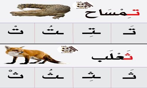 كراسة تعليم الأطفال كتاب الحروف العربية بأشكالها