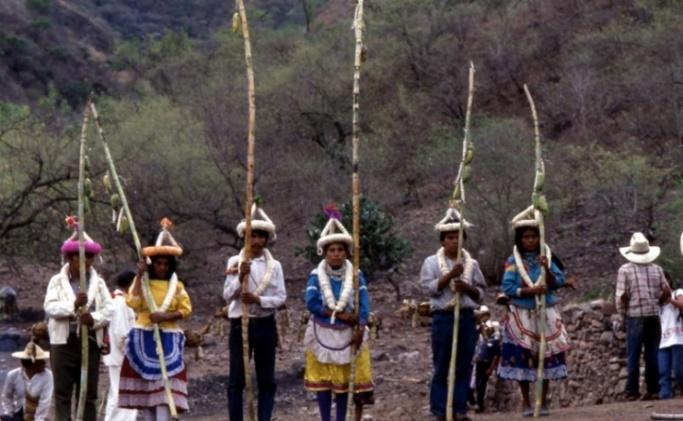 Tepehuanes del Sur - O'dam de Durango. | INPI | Instituto Nacional de los  Pueblos Indígenas | Gobierno | gob.mx
