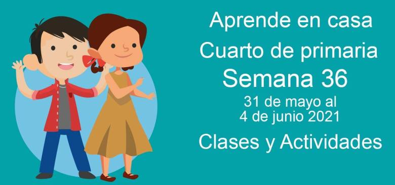 Aprende en casa Cuarto de primaria semana 36 del 31 de mayo al 4 de junio 2021 clases y actividades