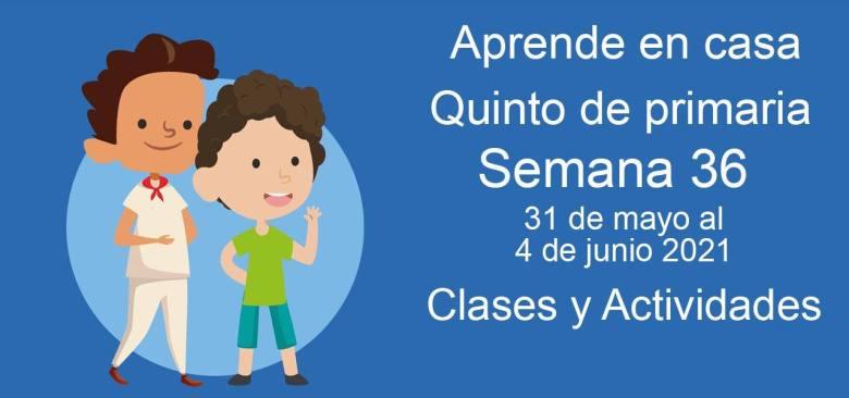 Aprende en casa Quinto de primaria semana 36 del 31 de mayo  al 4 de junio 2021 clases y actividades