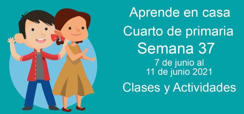 Aprende en casa Cuarto de primaria semana 37 del 7 de junio al 11 de junio 2021 clases y actividades