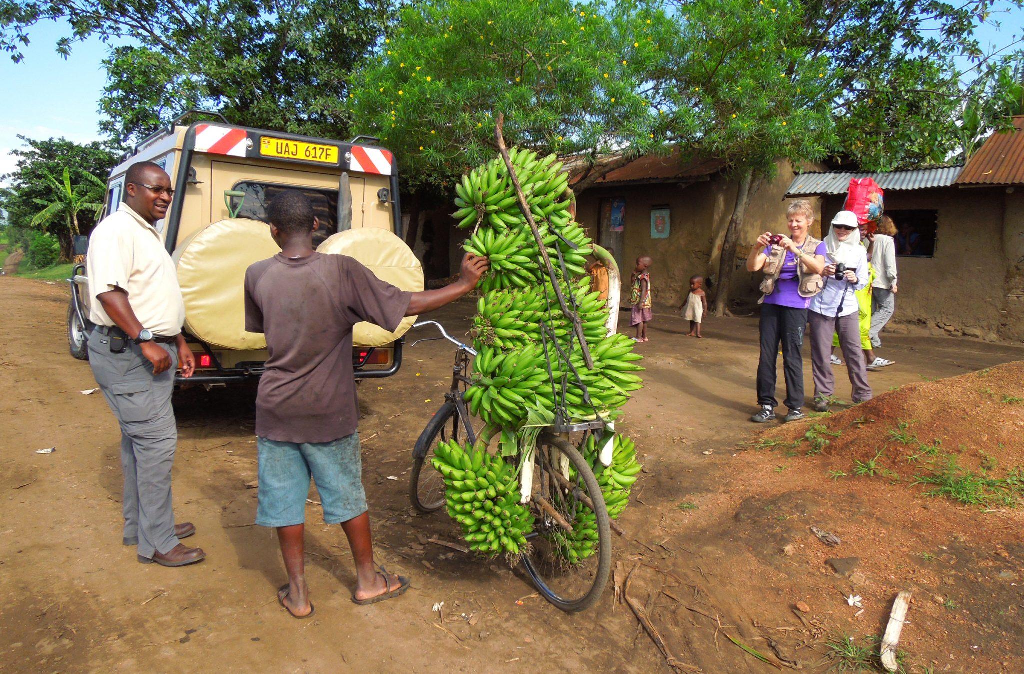 12.-uganda-gorilla-trek-for-women