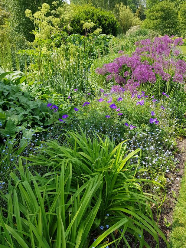 flower bed filled with herbaceous perennials