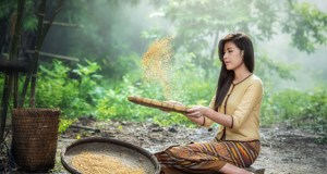 nti-news-rice-roasted-husk-is-a-super-food