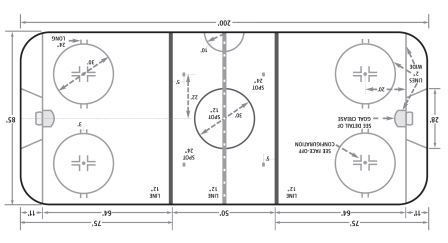 Figure 1: Hockey Rink (1)
