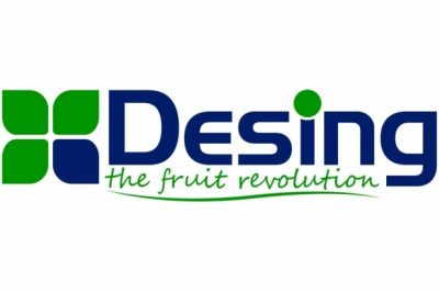 Three months internship program in Desing open