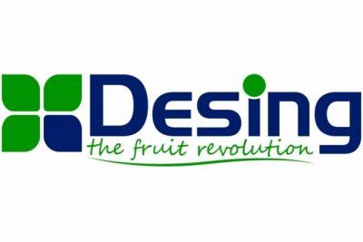 Three months internship program in Desing open