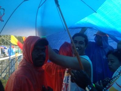 Under the tarps