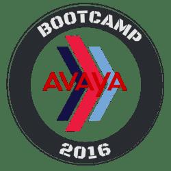 2016_avayabootcamp