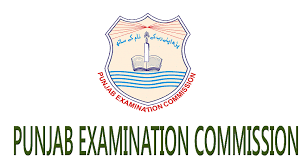 Online PEC 5th 8th Class Results 2018 Check by Roll No Name School Wise Search