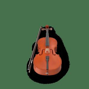 Eastman Strings