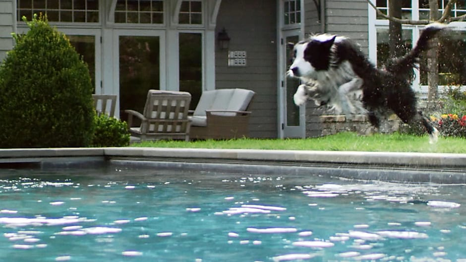 Dive Into Your Dream Home Today [Learn How]