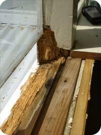 Timber Frames vs uPVC Frames