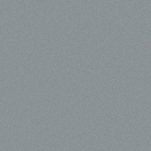 PANDEMONIUM SILVER FLAT 9717004F