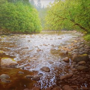 Avonmore River in Avondale Wicklow - Brian McCarthy - Nua Collective - Artist