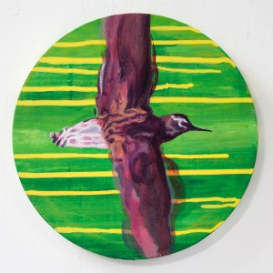 Nua Collective - Artist - Katrina Tracuma - Green sandpiper, acrylic, ink and oil on canvas, 30cm in diameter, 2019