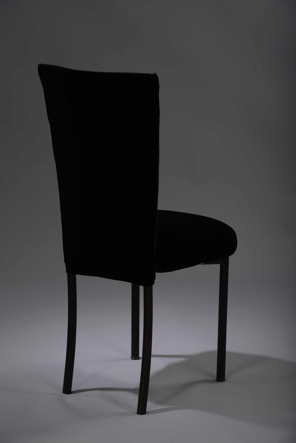 chair cover rental cost church chairs direct black velvet chameleon  nüage designs