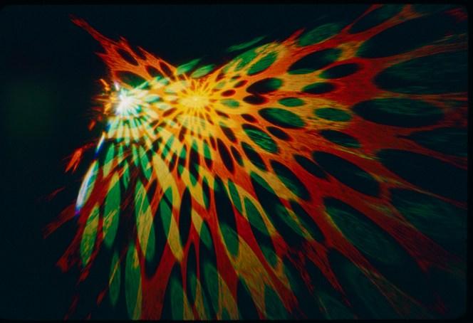 27_UpisDown_Goldsholl_lenstar slide