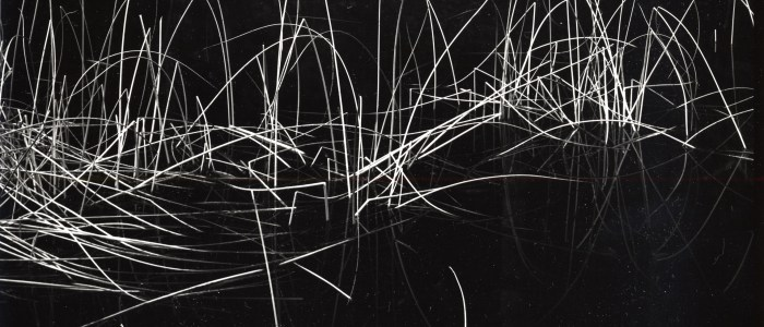 Block Museum receives major gift of photography by Brett Weston