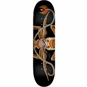 8.25″ Powell Peralta Biss Marion Moth Flight Deck